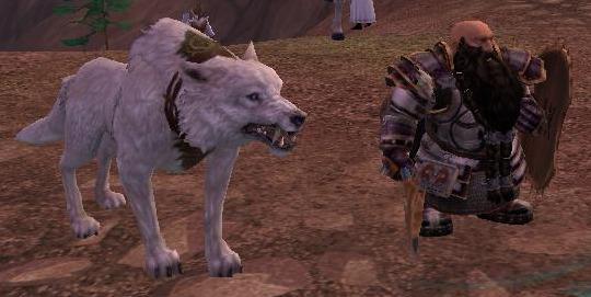 wolf buddy